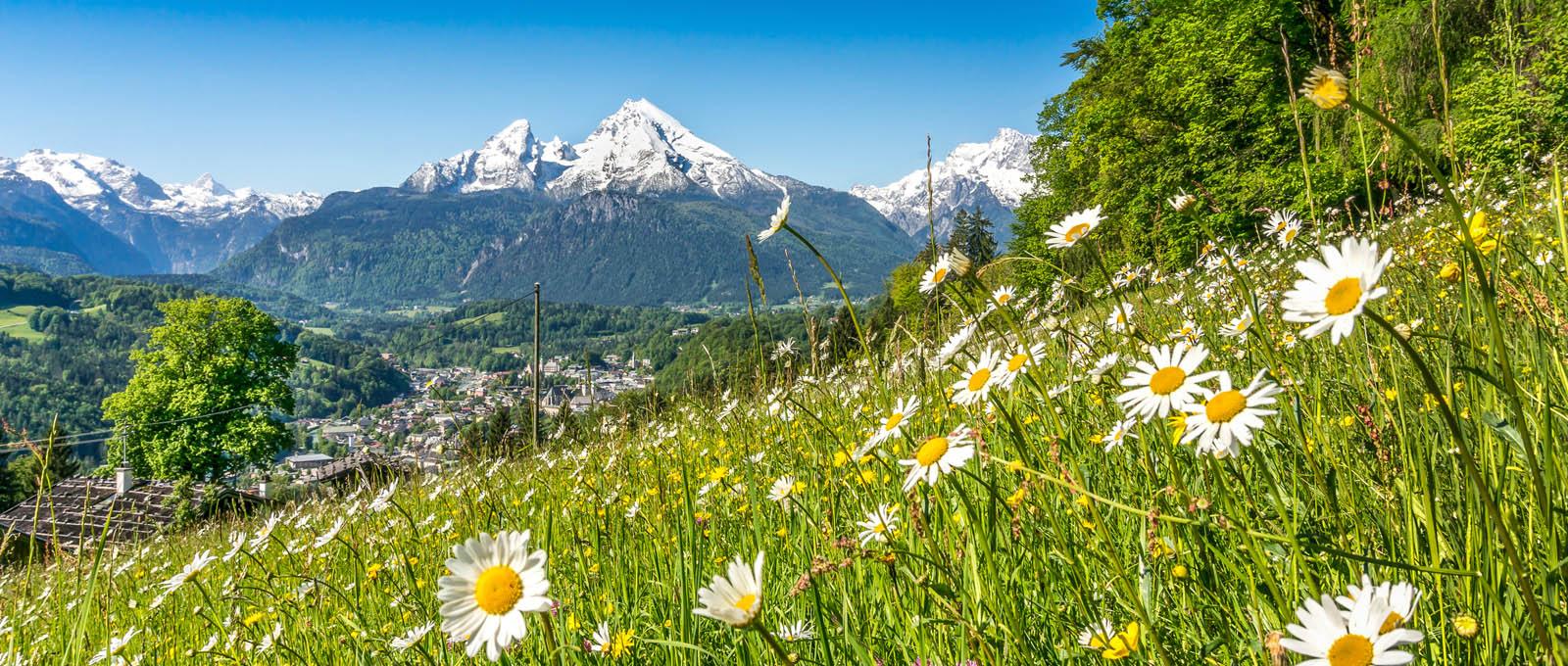 Plánujete dovolenou v Rakouských Alpách? Pozor na ekologické zóny na dálnici a na rychlostní limity.
